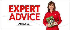Expert Advice Articles Promo Image