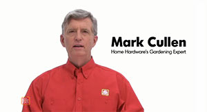 Mark Cullen Expert Advice Videos